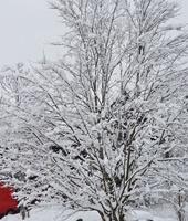 Winter 21 Schnee